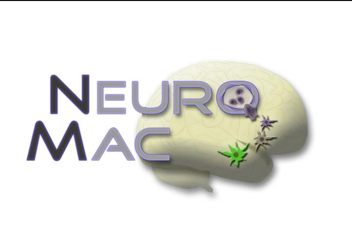 CRC-TRR 167   NeuroMac